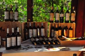 サントステファノのワインラインナップ