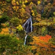 七ツ滝(紅葉)
