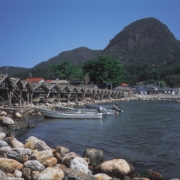 屋那の松原と船小屋_隠岐の島