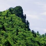 トカゲ岩_隠岐の島