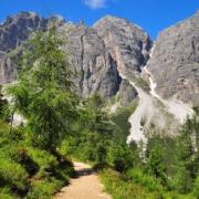 自然教育の道